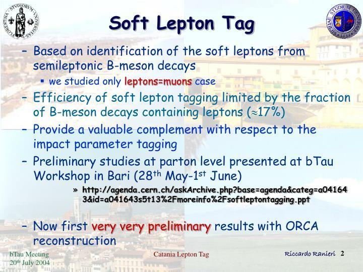 Soft lepton tag