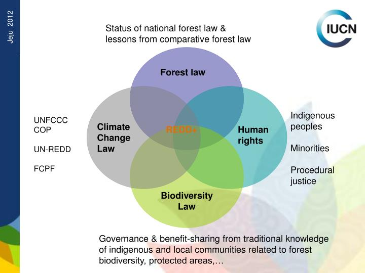 Status of national forest law & lessons from comparative forest law