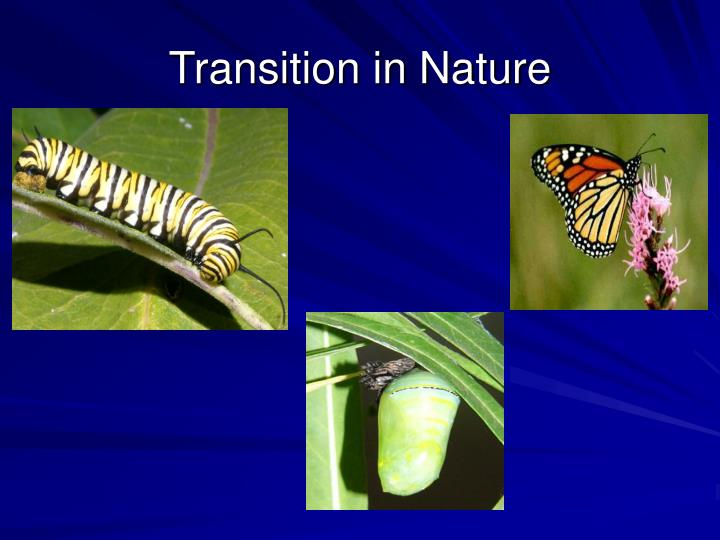 Transition in Nature