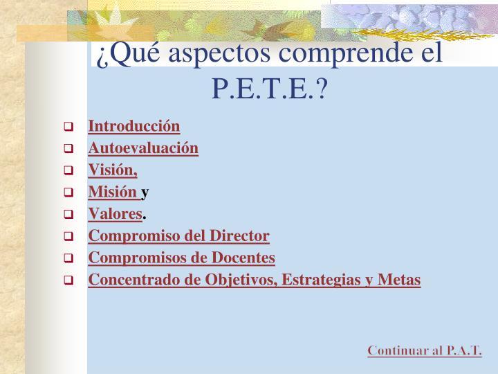 ¿Qué aspectos comprende el P.E.T.E.?