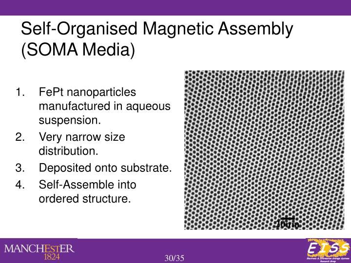FePt nanoparticles manufactured in aqueous suspension.