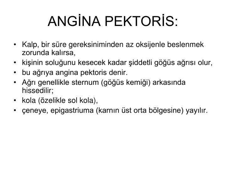 ANGİNA PEKTORİS: