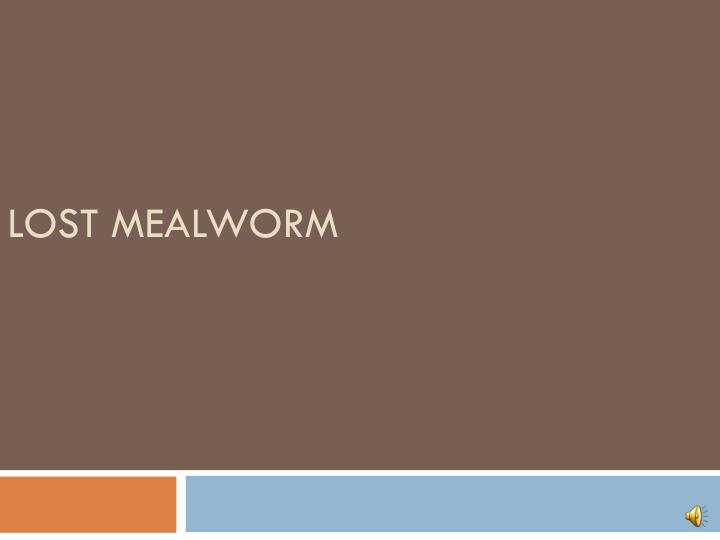 Lost mealworm