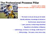 the professional prowess pillar