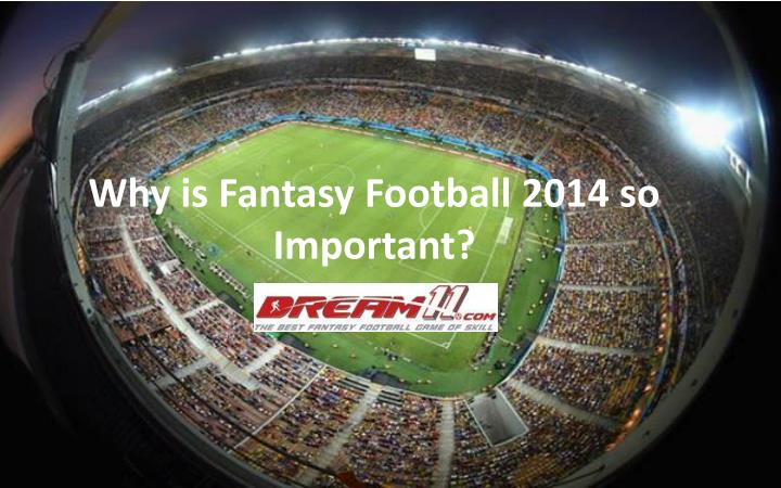Why is fantasy football 2014 so important