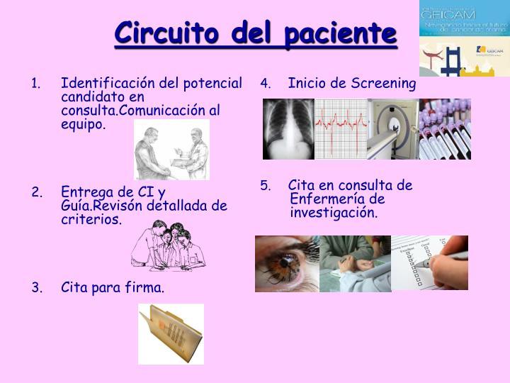 Circuito del paciente