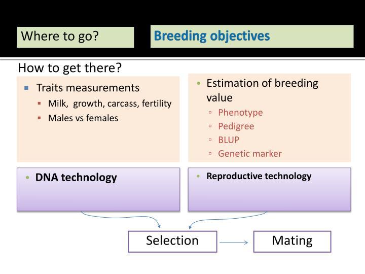 Breeding objectives