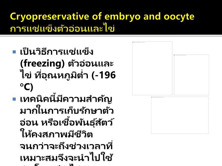 Cryopreservative