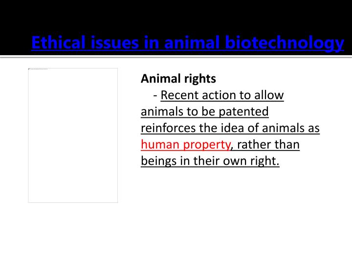 Ethical issues in animal biotechnology
