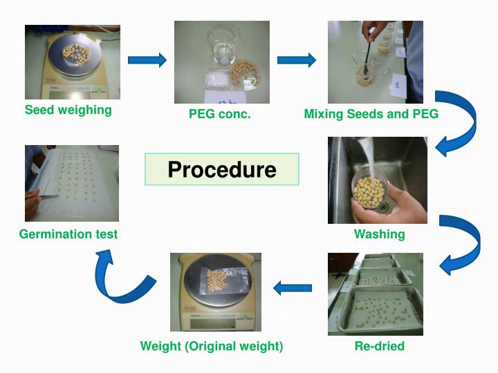 Seed weighing