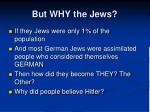 but why the jews