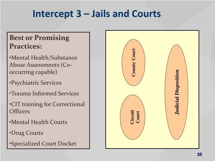 Intercept 3 – Jails and Courts