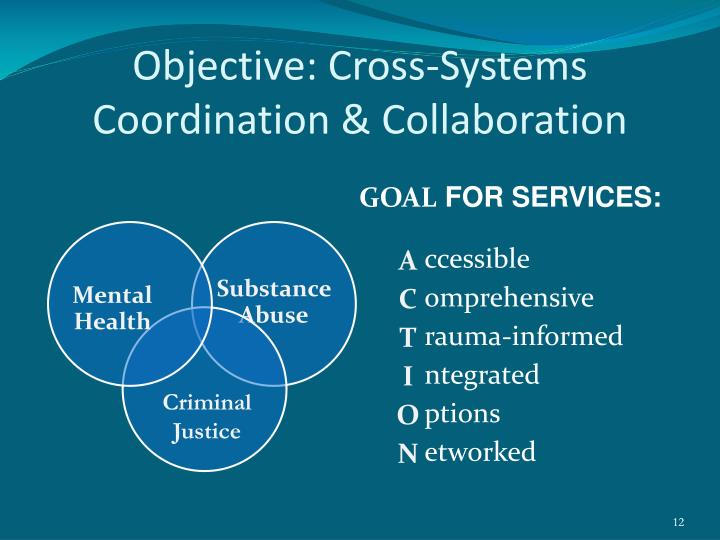 Objective: Cross-Systems Coordination & Collaboration