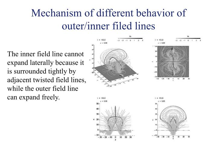 Mechanism of different behavior of outer/inner filed lines