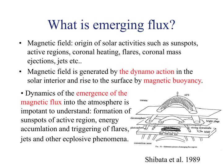 What is emerging flux