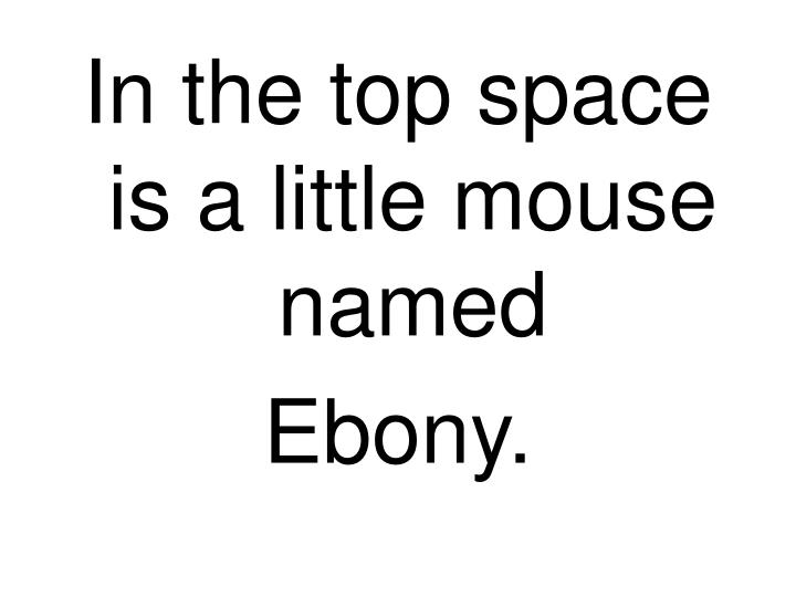 In the top space is a little mouse named