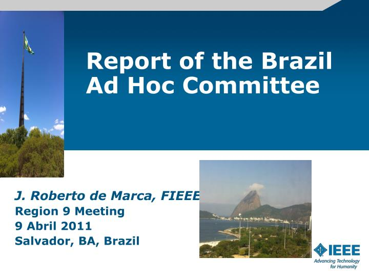 report of the brazil ad hoc committee n.