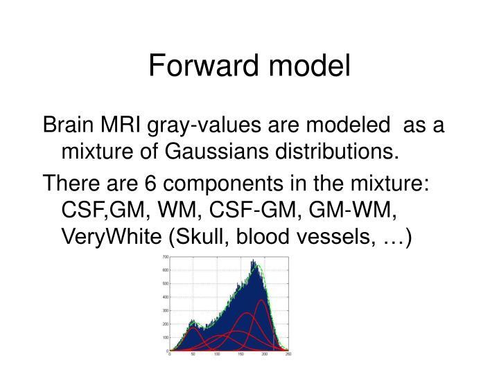 Forward model