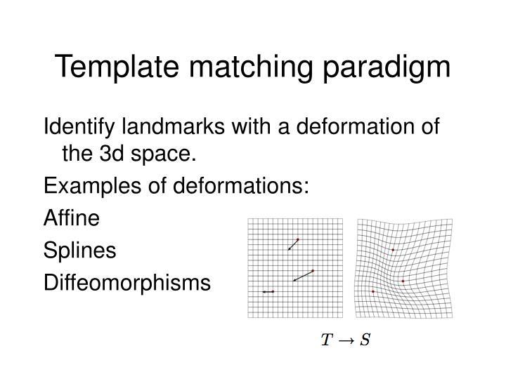 Template matching paradigm
