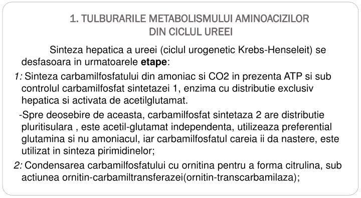 1 tulburarile metabolismului aminoacizilor din ciclul ureei