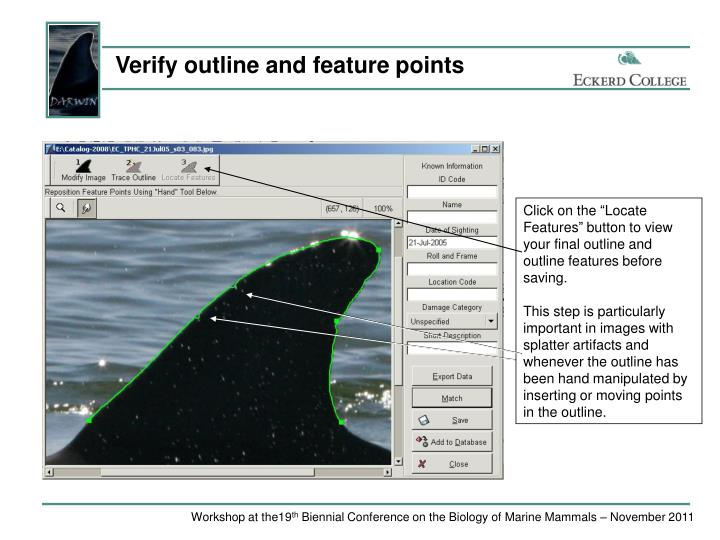 Verify outline and feature points