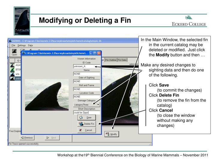 Modifying or Deleting a Fin