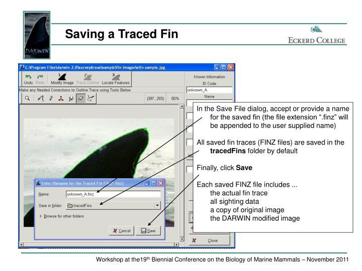 Saving a Traced Fin