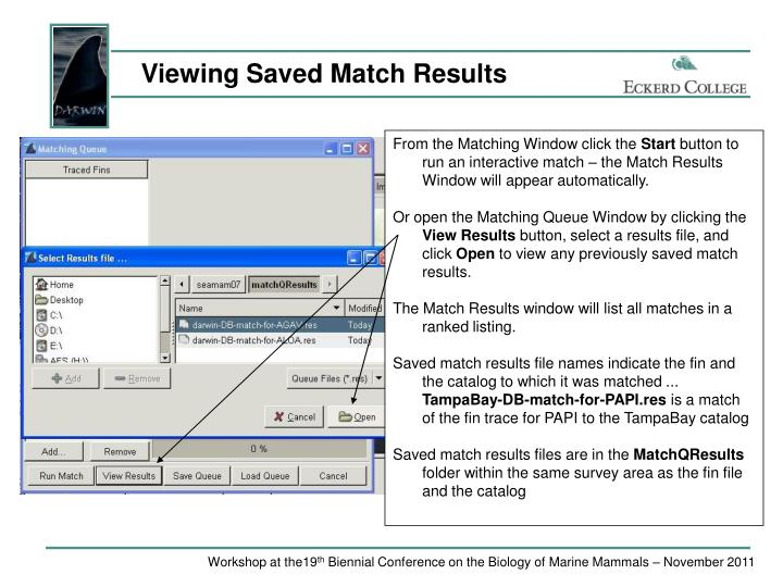 Viewing Saved Match Results