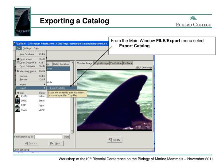 Exporting a Catalog