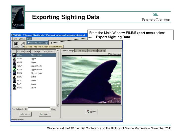 Exporting Sighting Data