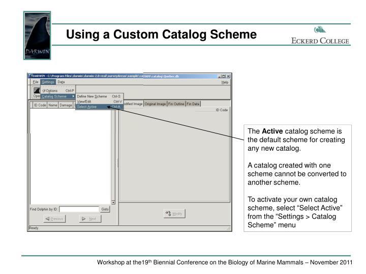 Using a Custom Catalog Scheme