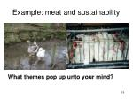 example meat and sustainability
