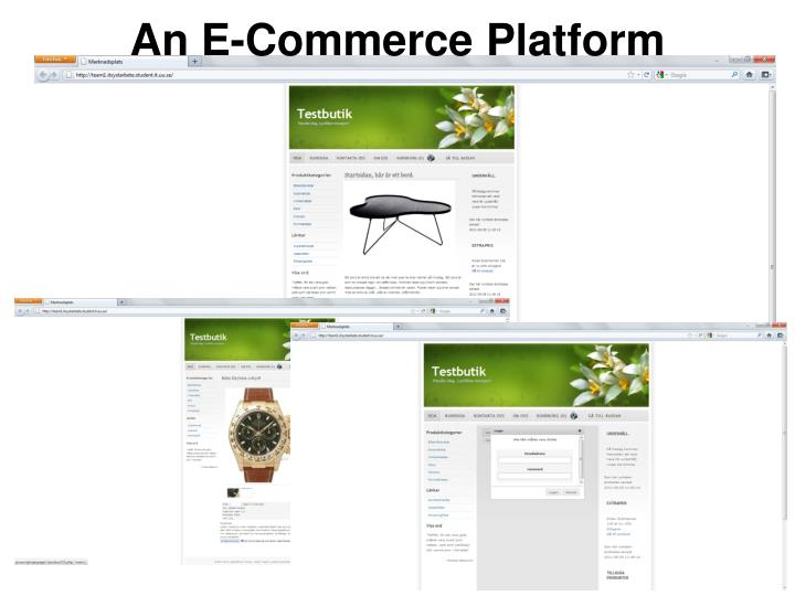 An E-Commerce Platform