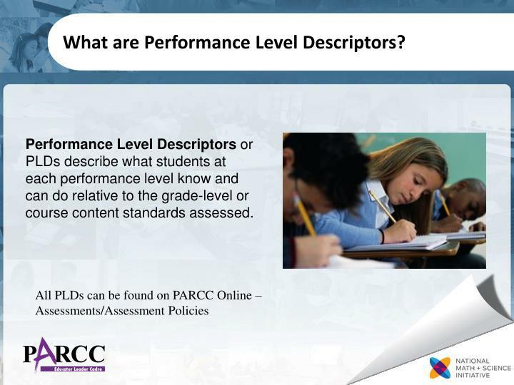 What are performance level descriptors
