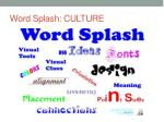 word splash culture