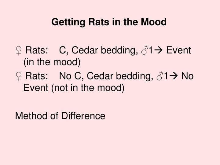 Getting Rats in the Mood