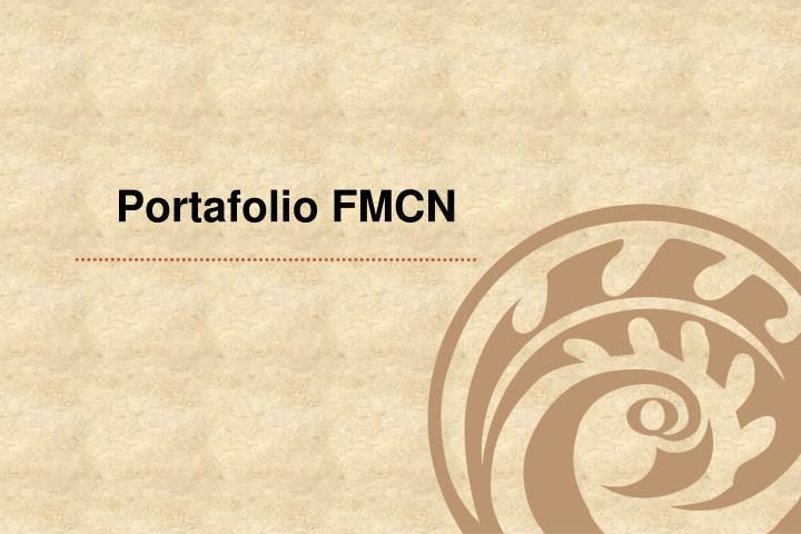 Portafolio FMCN