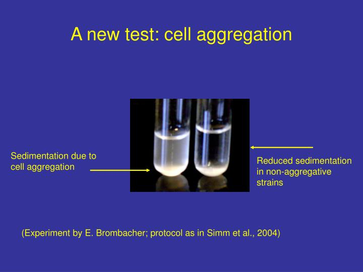 A new test: cell aggregation