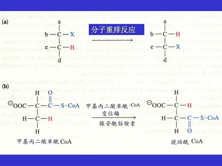 分子重排反应