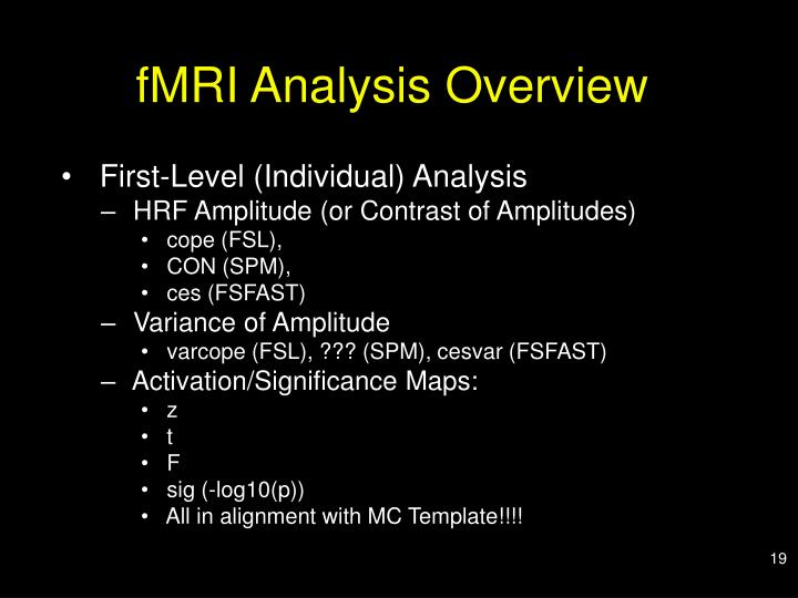 fMRI Analysis Overview