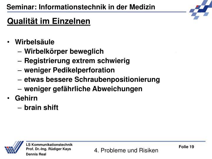 4. Probleme und Risiken