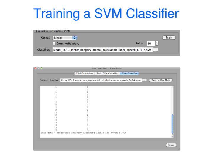 Training a SVM Classifier