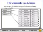 file organization and access11