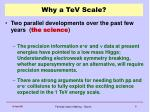 why a tev scale