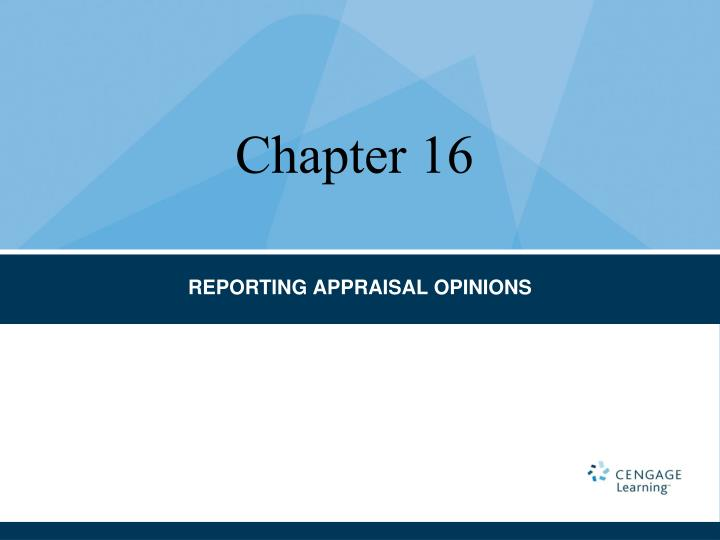 reporting appraisal opinions n.