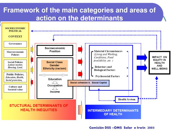 Framework of the main categories and areas of action on the determinants