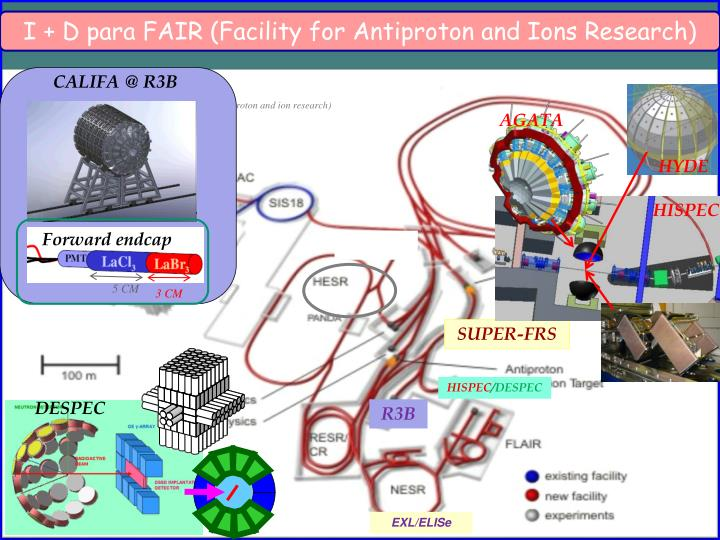 I + D para FAIR (Facility for Antiproton and Ions Research)