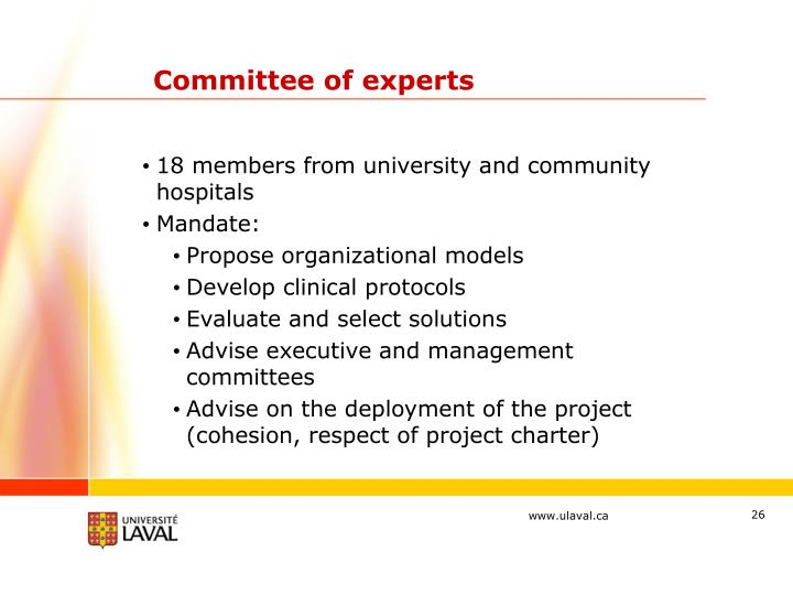 Committee of experts
