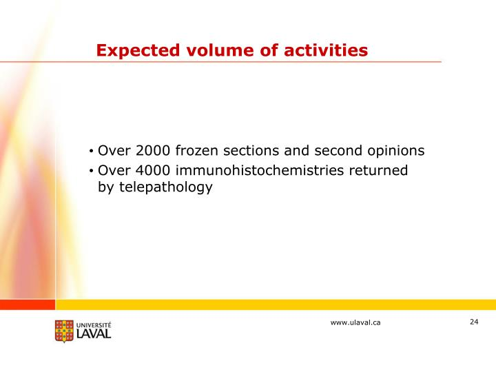 Expected volume of activities