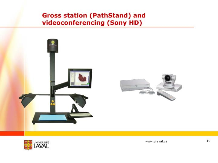 Gross station (PathStand) and videoconferencing (Sony HD)